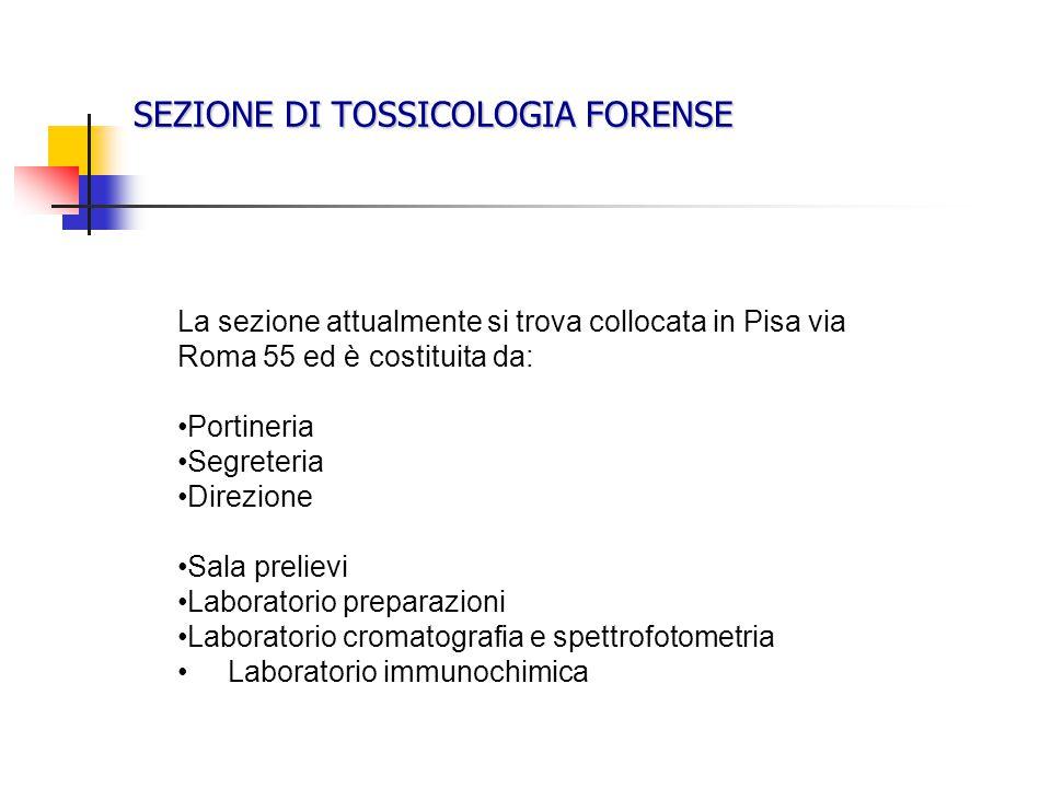 SEZIONE DI TOSSICOLOGIA FORENSE La sezione attualmente si trova collocata in Pisa via Roma 55 ed è costituita da: Portineria Segreteria Direzione Sala