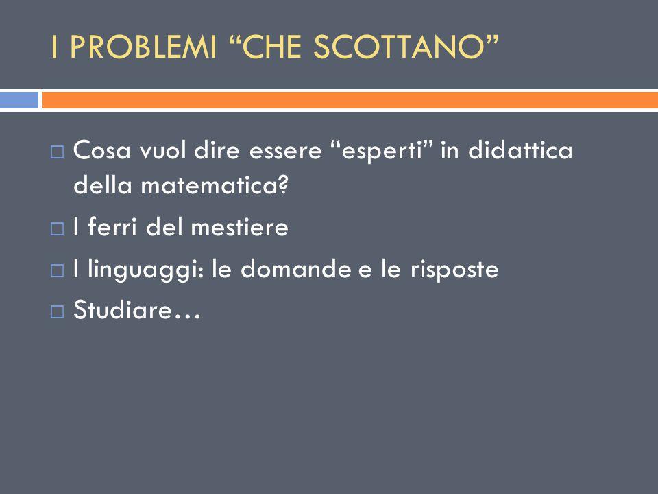 """I PROBLEMI """"CHE SCOTTANO""""  Cosa vuol dire essere """"esperti"""" in didattica della matematica?  I ferri del mestiere  I linguaggi: le domande e le rispo"""