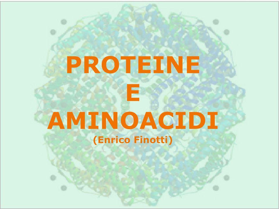 PROTEINE E AMINOACIDI (Enrico Finotti)