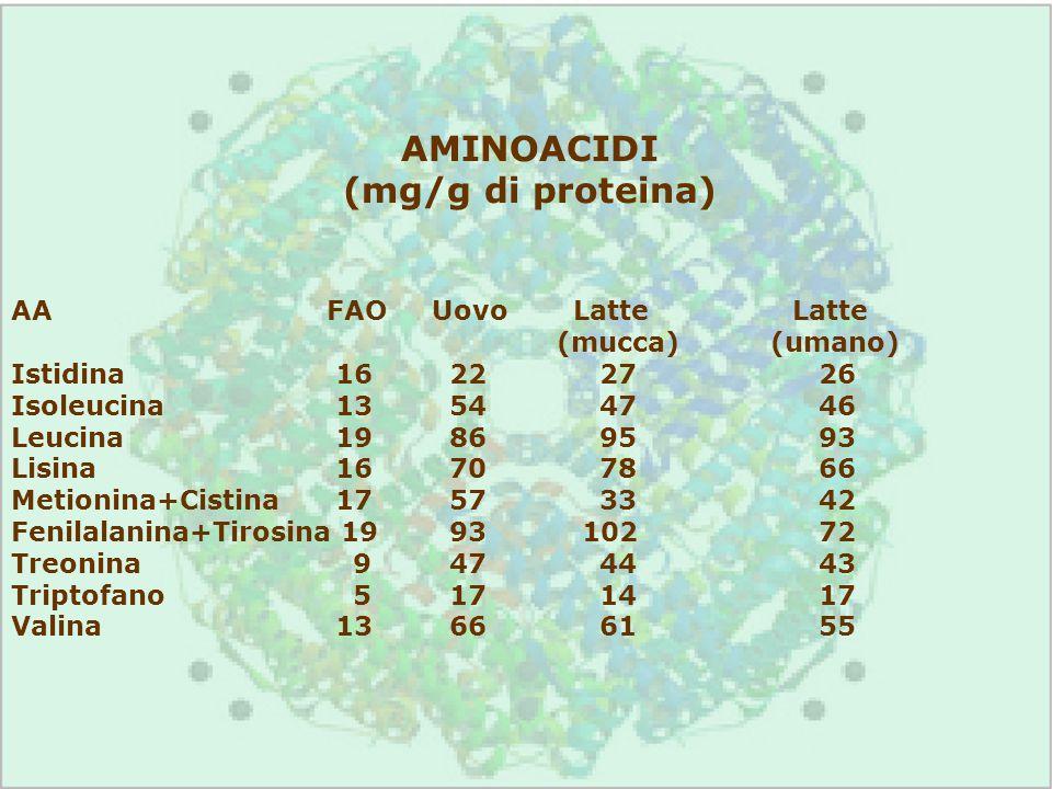 AMINOACIDI (mg/g di proteina) AAFAOUovo Latte Latte (mucca) (umano) Istidina 16 22 27 26 Isoleucina 13 54 47 46 Leucina 19 86 95 93 Lisina 16 70 78 66