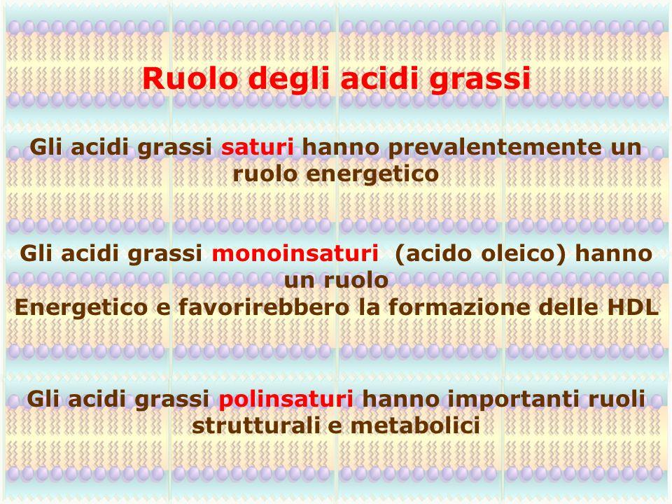 Gli acidi grassi saturi hanno prevalentemente un ruolo energetico Gli acidi grassi monoinsaturi (acido oleico) hanno un ruolo Energetico e favorirebbe