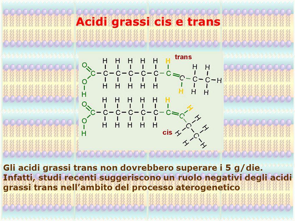 Acidi grassi cis e trans Gli acidi grassi trans non dovrebbero superare i 5 g/die. Infatti, studi recenti suggeriscono un ruolo negativi degli acidi g