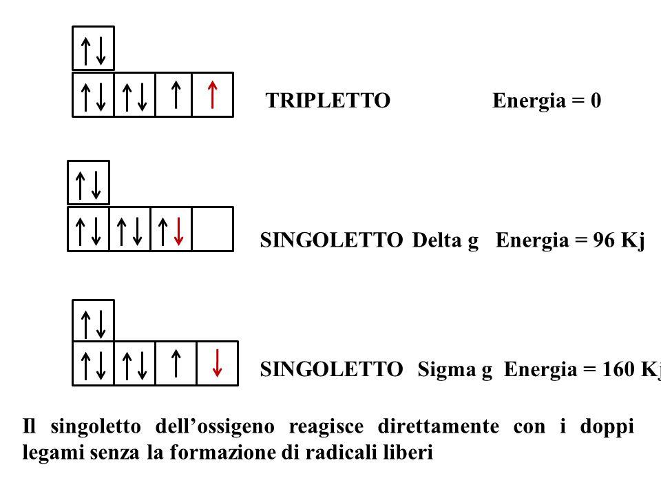 TRIPLETTO Energia = 0 SINGOLETTO Delta g Energia = 96 Kj SINGOLETTO Sigma g Energia = 160 Kj Il singoletto dell'ossigeno reagisce direttamente con i d