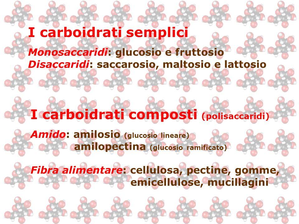 I carboidrati semplici Monosaccaridi: glucosio e fruttosio Disaccaridi: saccarosio, maltosio e lattosio I carboidrati composti (polisaccaridi) Amido: