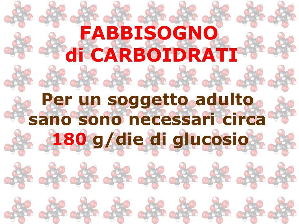 Per un soggetto adulto sano sono necessari circa 180 g/die di glucosio FABBISOGNO di CARBOIDRATI