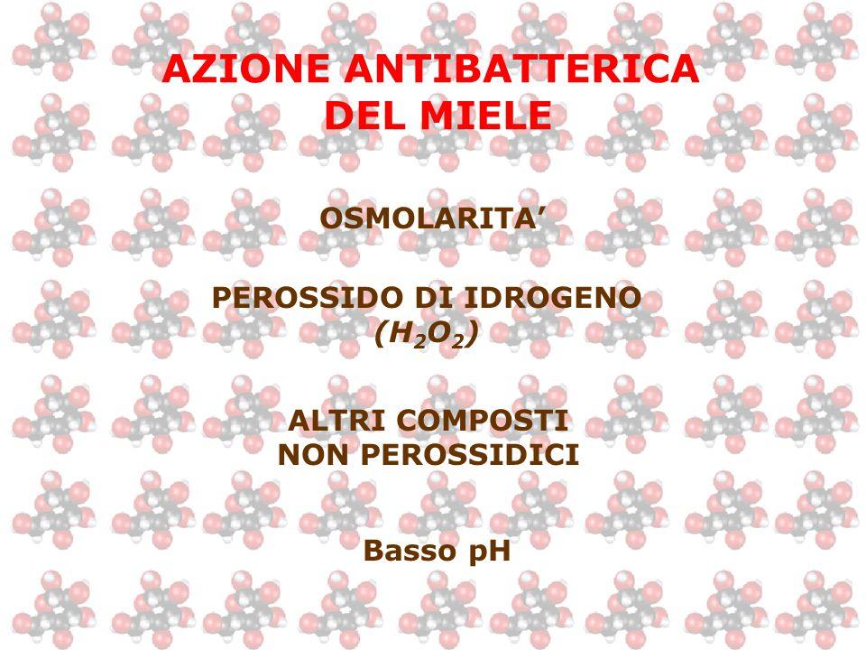 AZIONE ANTIBATTERICA DEL MIELE OSMOLARITA' PEROSSIDO DI IDROGENO (H 2 O 2 ) ALTRI COMPOSTI NON PEROSSIDICI Basso pH