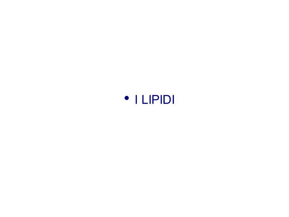 Aspetti generali I lipidi, anche detti grassi, sono composti ternari → C, H, O (possono contenere anche P, N) Caratteristiche: hanno Ps < 1 sono untuosi al tatto sono insolubili in acqua sono solubili in solventi organici lasciano una macchia traslucida sulla carta