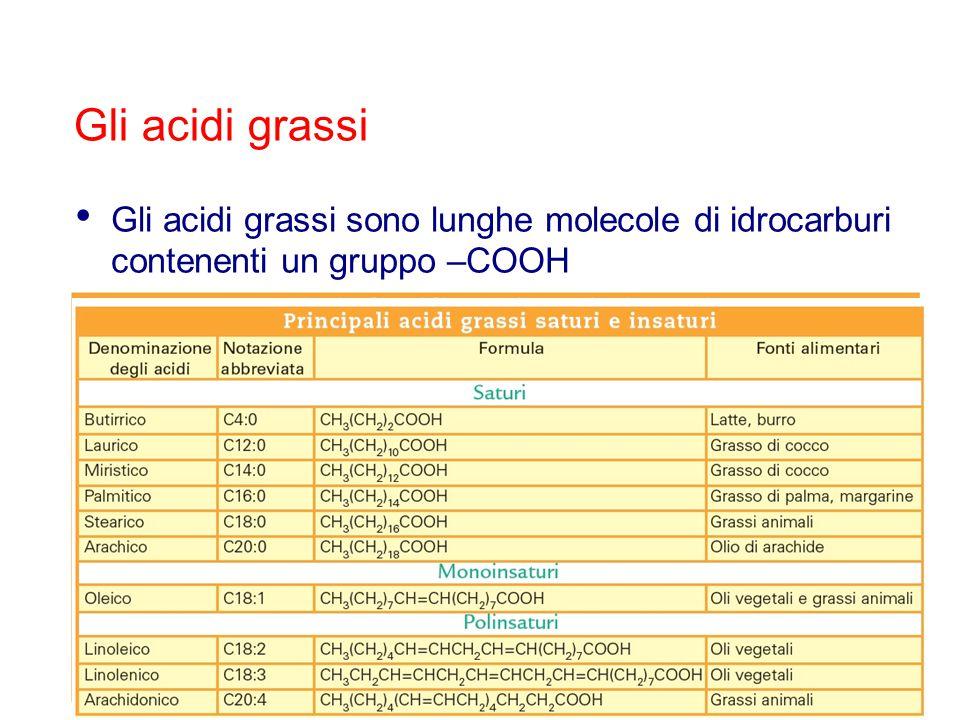 Le sostanze lipidiche ricche di acidi grassi saturi sono solide a temperatura ambiente → grassi Le sostanze lipidiche ricche di acidi grassi insaturi o polinsaturi sono liquide a temperatura ambiente → oli