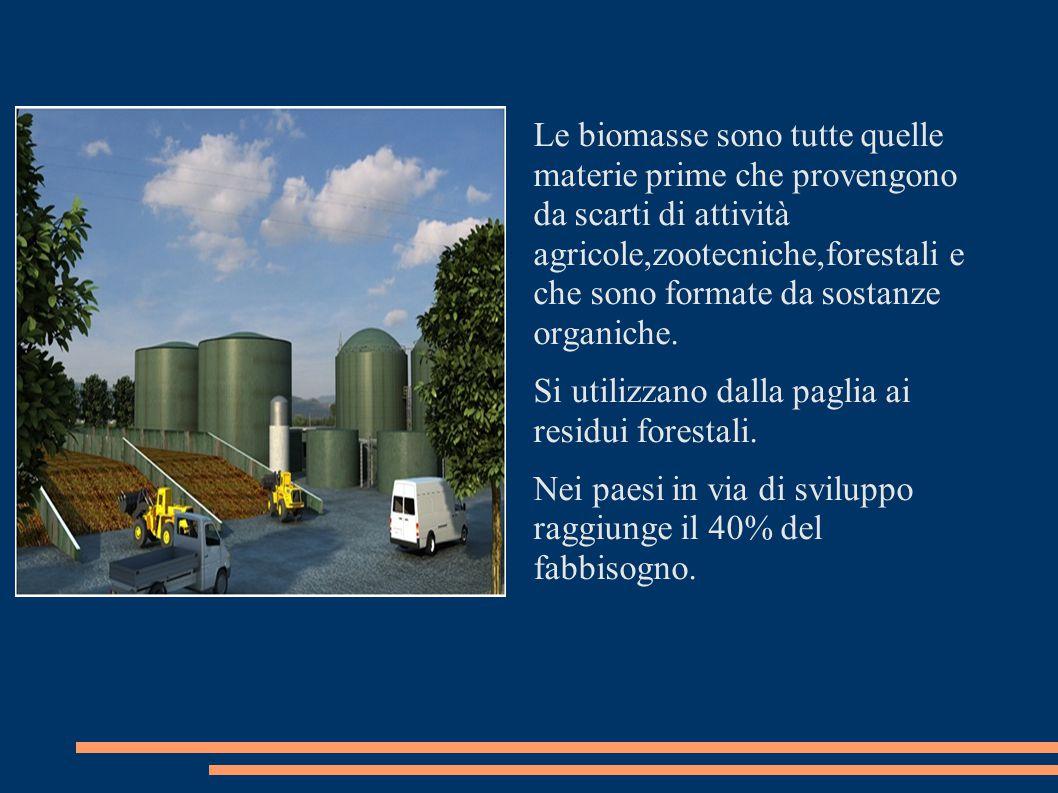 Le biomasse sono programmabili e questo è un grande vantaggio.