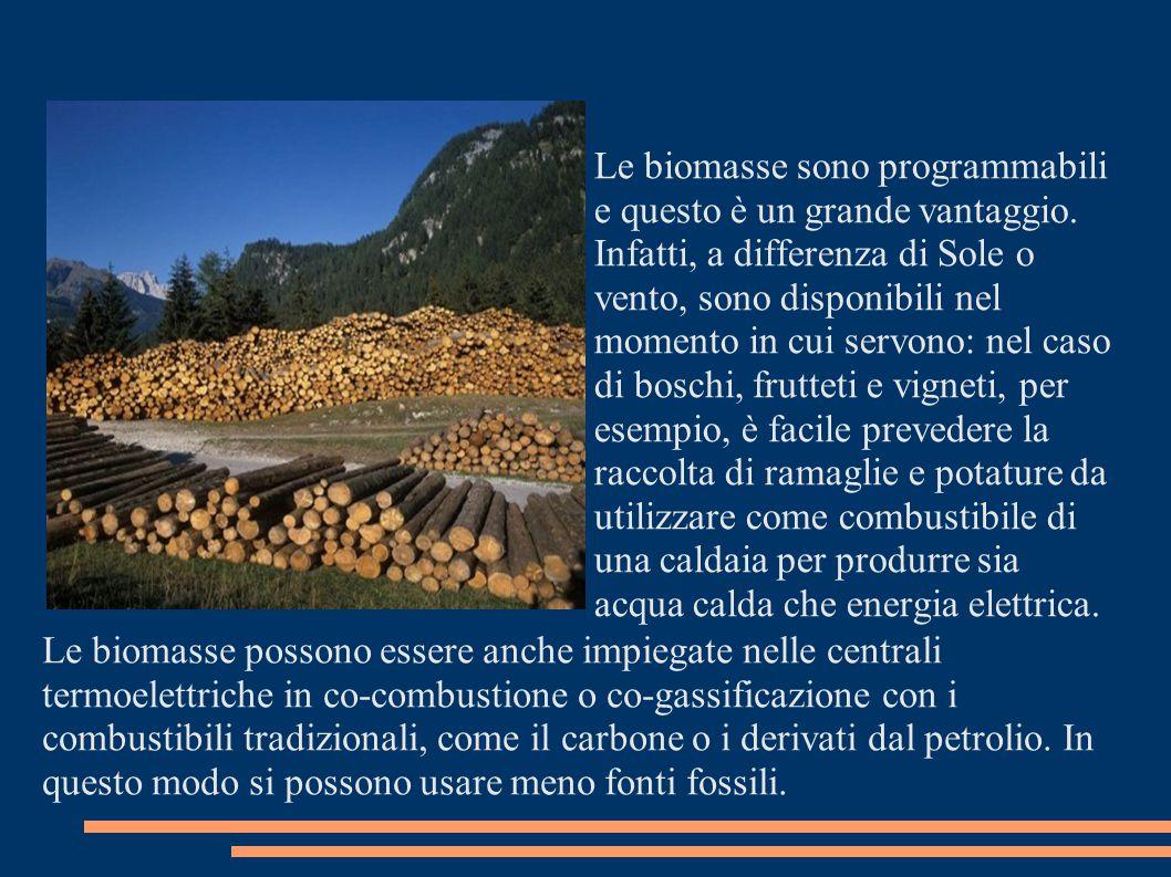 Biocarburanti..