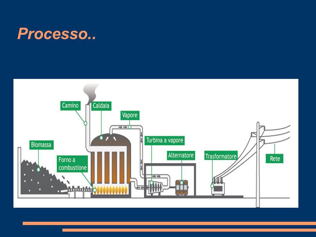 I rifiuti organici animali e degli scarti agricoli, sottoposti a fermentazione, producono il biogas.