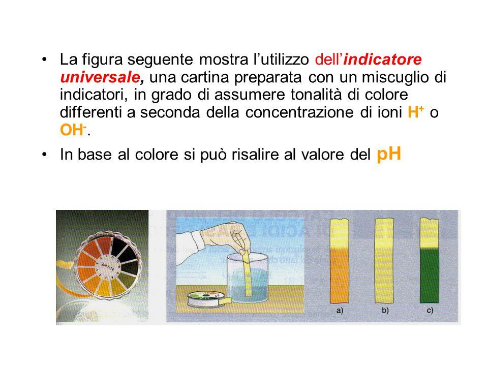 La figura seguente mostra l'utilizzo dell'indicatore universale, una cartina preparata con un miscuglio di indicatori, in grado di assumere tonalità d