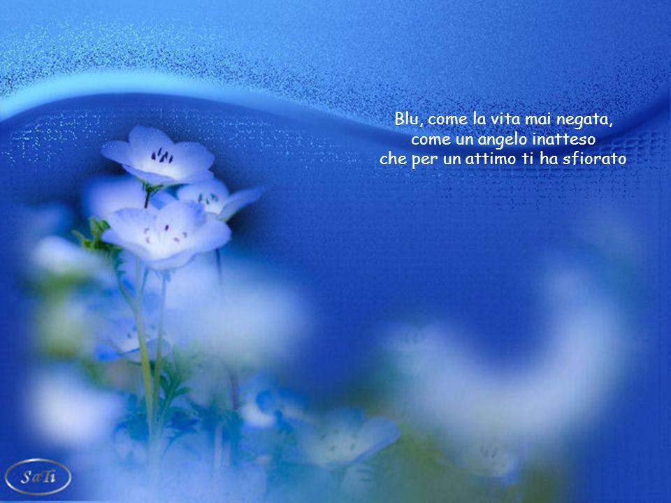 Blu, come il profumo di un fiore pitturato sulla tela e lo sguardo inviolato di un bambino, come il ricordo di un'onda leggera, di una lacrima consegn