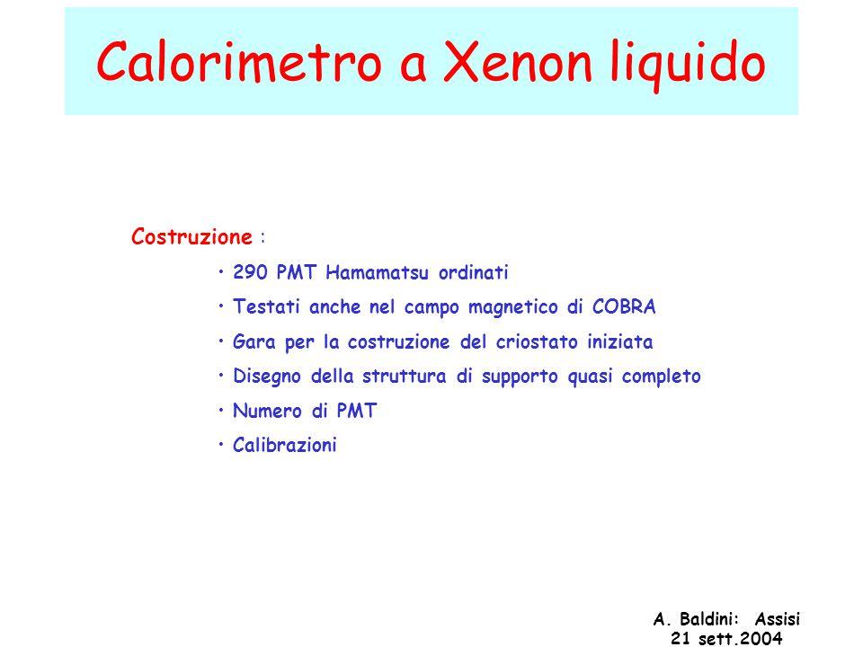 A. Baldini: Assisi 21 sett.2004 Calorimetro a Xenon liquido Costruzione : 290 PMT Hamamatsu ordinati Testati anche nel campo magnetico di COBRA Gara p
