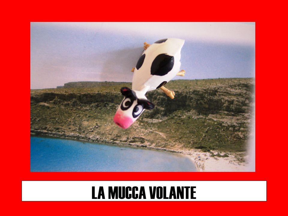 LA MUCCA VOLANTE