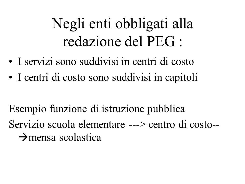 Negli enti obbligati alla redazione del PEG : I servizi sono suddivisi in centri di costo I centri di costo sono suddivisi in capitoli Esempio funzion