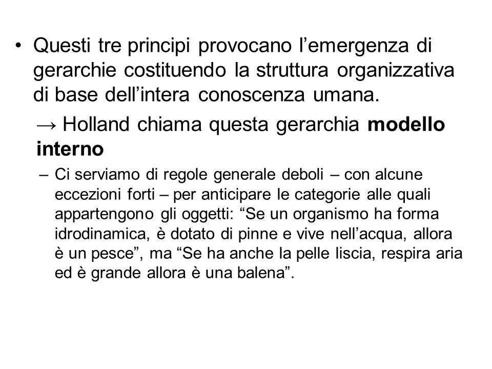 Questi tre principi provocano l'emergenza di gerarchie costituendo la struttura organizzativa di base dell'intera conoscenza umana. → Holland chiama q