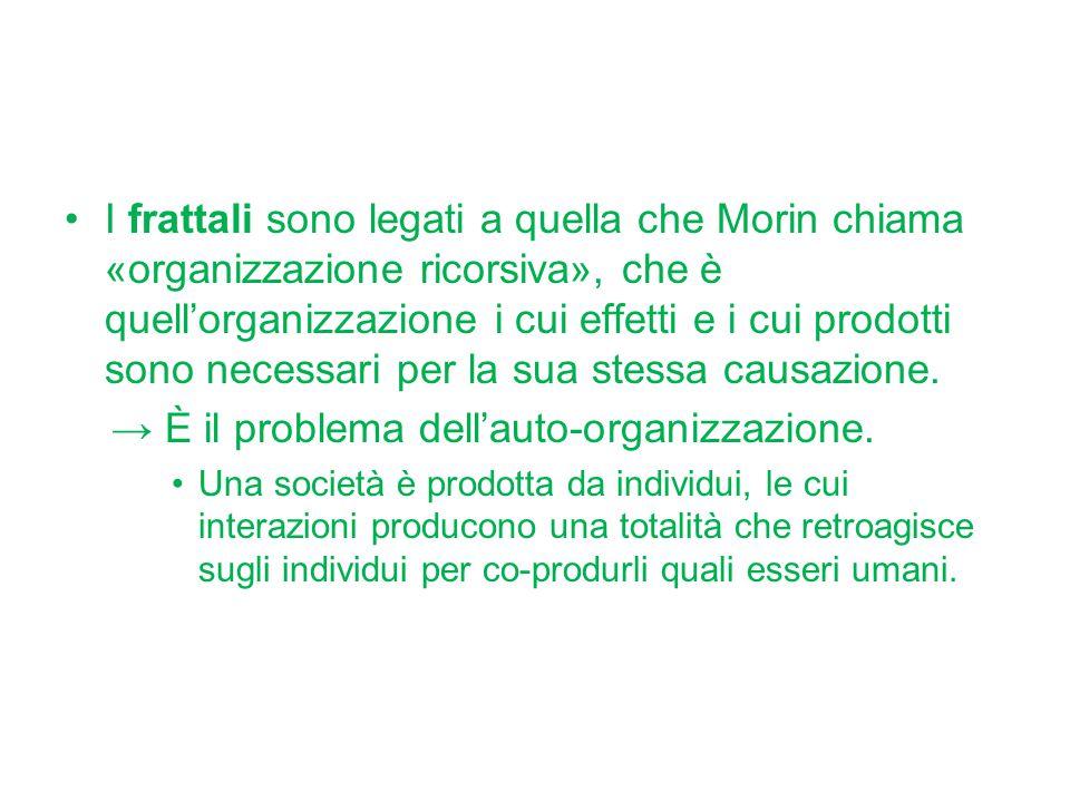 I frattali sono legati a quella che Morin chiama «organizzazione ricorsiva», che è quell'organizzazione i cui effetti e i cui prodotti sono necessari