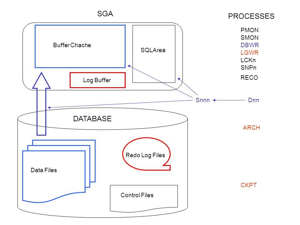 Redo Log Files Control Files SYSTEM TEMP RBS DATA IDX LAYOUT FISICO DI UN DATABASE ????????????