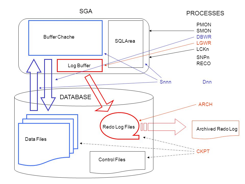 Blocco oracle HEADER Data space Pctfree Pctused