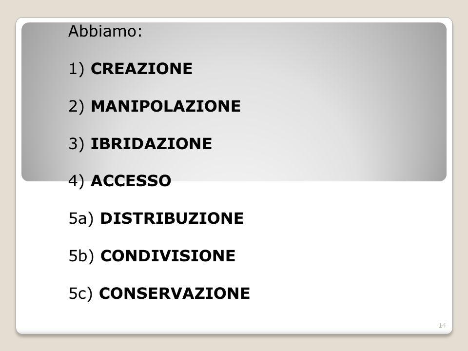 Abbiamo: 1) CREAZIONE 2) MANIPOLAZIONE 3) IBRIDAZIONE 4) ACCESSO 5a) DISTRIBUZIONE 5b) CONDIVISIONE 5c) CONSERVAZIONE 14