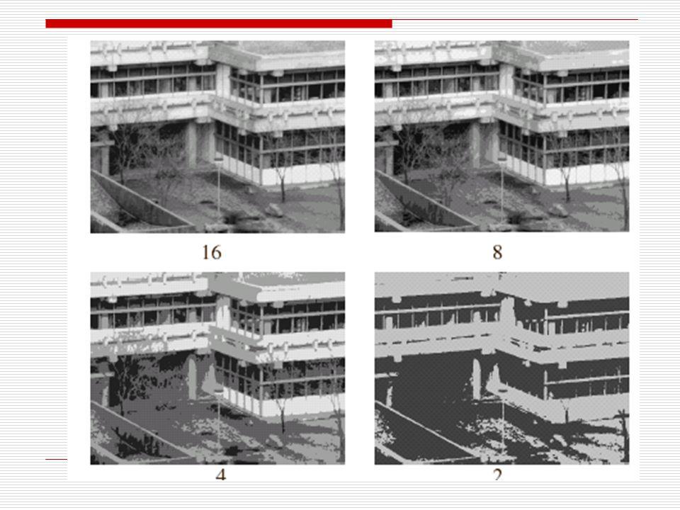 Effetti sulle immagini della variazione di quantizzazione La riduzione del numero di livelli provoca il peggioramento della qualità dell'immagine.