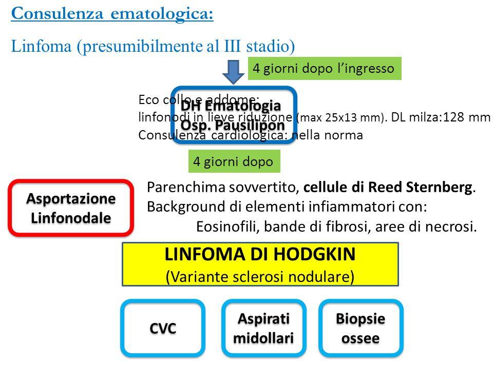 Consulenza ematologica: Linfoma (presumibilmente al III stadio) 4 giorni dopo l'ingresso DH Ematologia Osp. Pausilipon DH Ematologia Osp. Pausilipon E