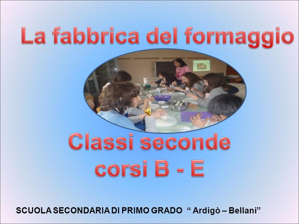 SCUOLA SECONDARIA DI PRIMO GRADO Ardigò – Bellani