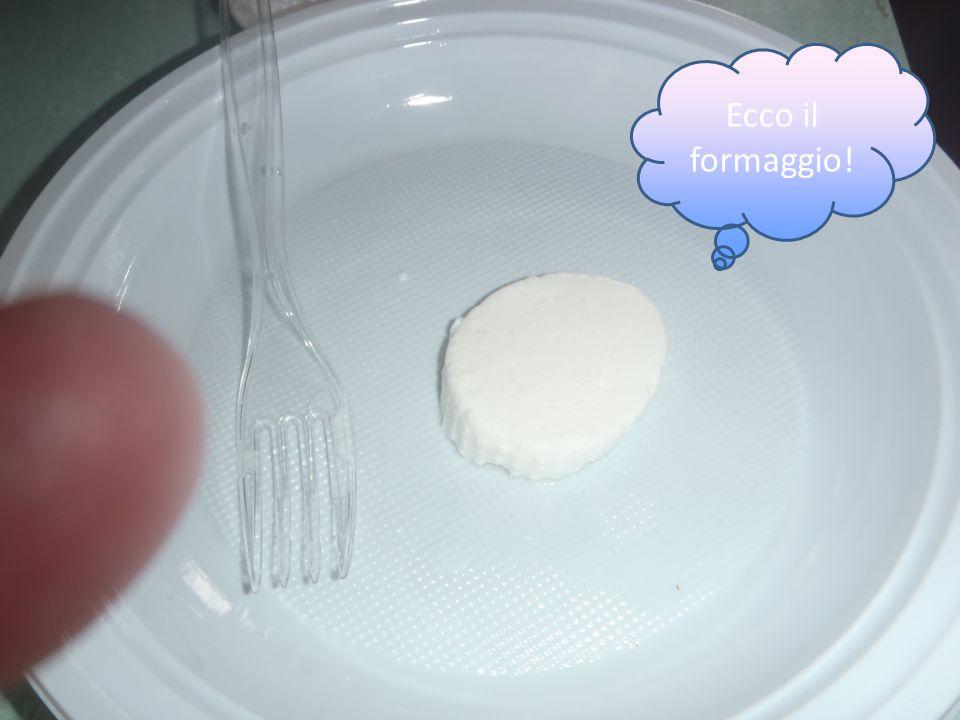 Ecco il formaggio!