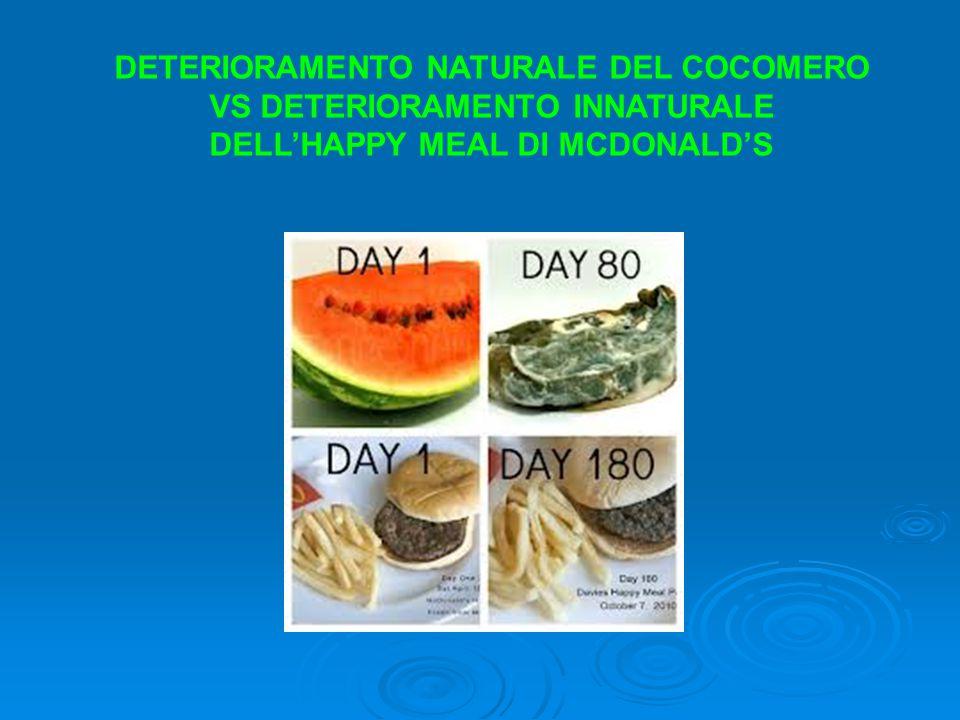 DETERIORAMENTO NATURALE DEL COCOMERO VS DETERIORAMENTO INNATURALE DELL'HAPPY MEAL DI MCDONALD'S
