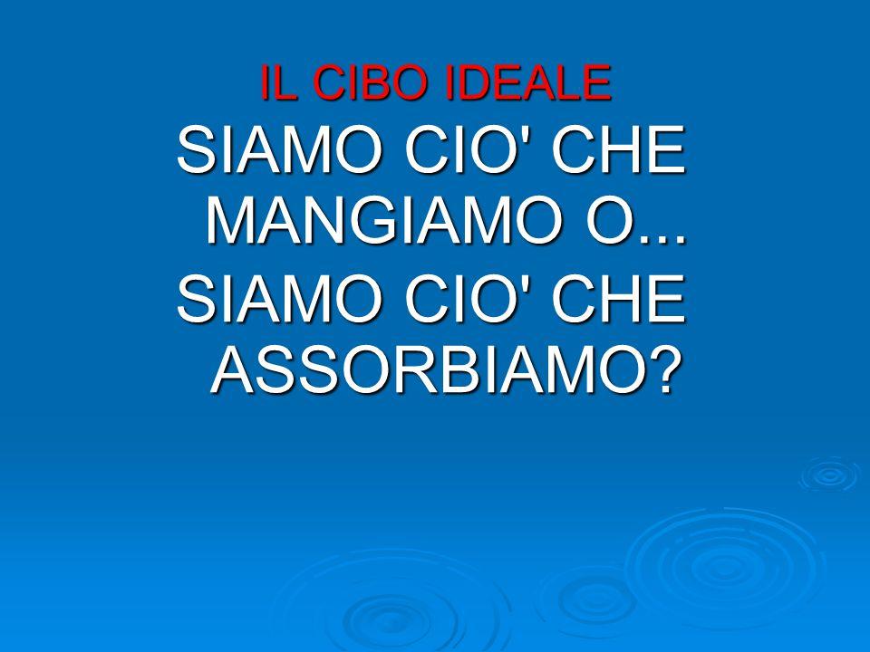 IL CIBO IDEALE SIAMO CIO CHE MANGIAMO O... SIAMO CIO CHE ASSORBIAMO