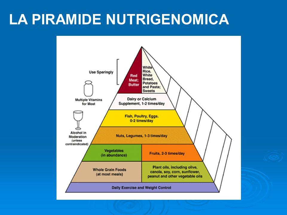 LA PIRAMIDE NUTRIGENOMICA