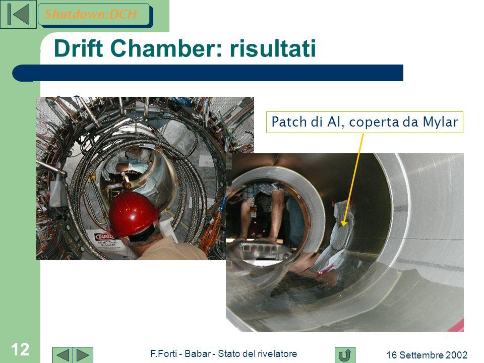 16 Settembre 2002 F.Forti - Babar - Stato del rivelatore 12 Drift Chamber: risultati e Patch di Al, coperta da Mylar Shutdown:DCH