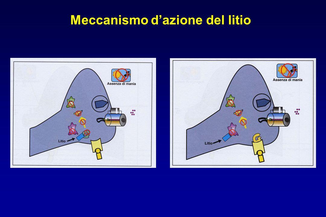 Meccanismo d'azione del litio