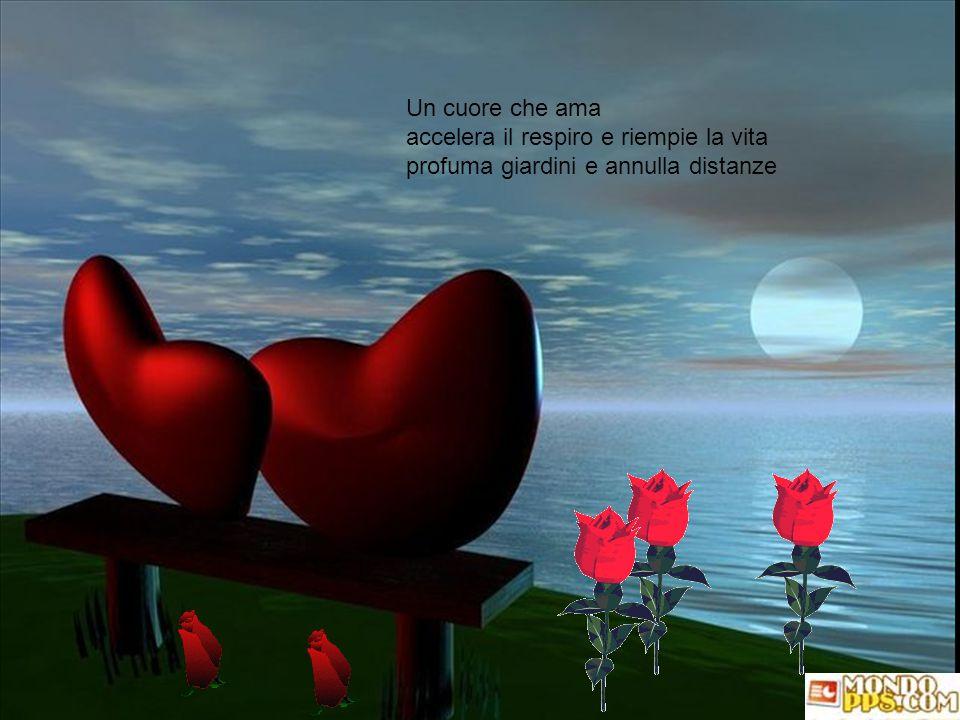 Viaggio dentro al cuore