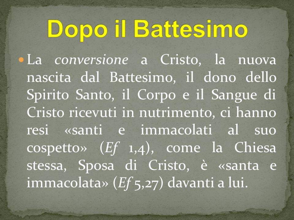 La conversione a Cristo, la nuova nascita dal Battesimo, il dono dello Spirito Santo, il Corpo e il Sangue di Cristo ricevuti in nutrimento, ci hanno resi «santi e immacolati al suo cospetto» (Ef 1,4), come la Chiesa stessa, Sposa di Cristo, è «santa e immacolata» (Ef 5,27) davanti a lui.