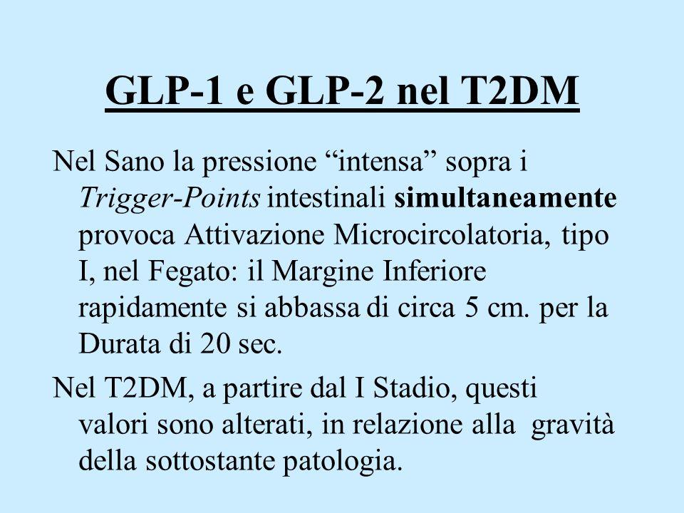 """GLP-1 e GLP-2 nel T2DM Nel Sano la pressione """"intensa"""" sopra i Trigger-Points intestinali simultaneamente provoca Attivazione Microcircolatoria, tipo"""