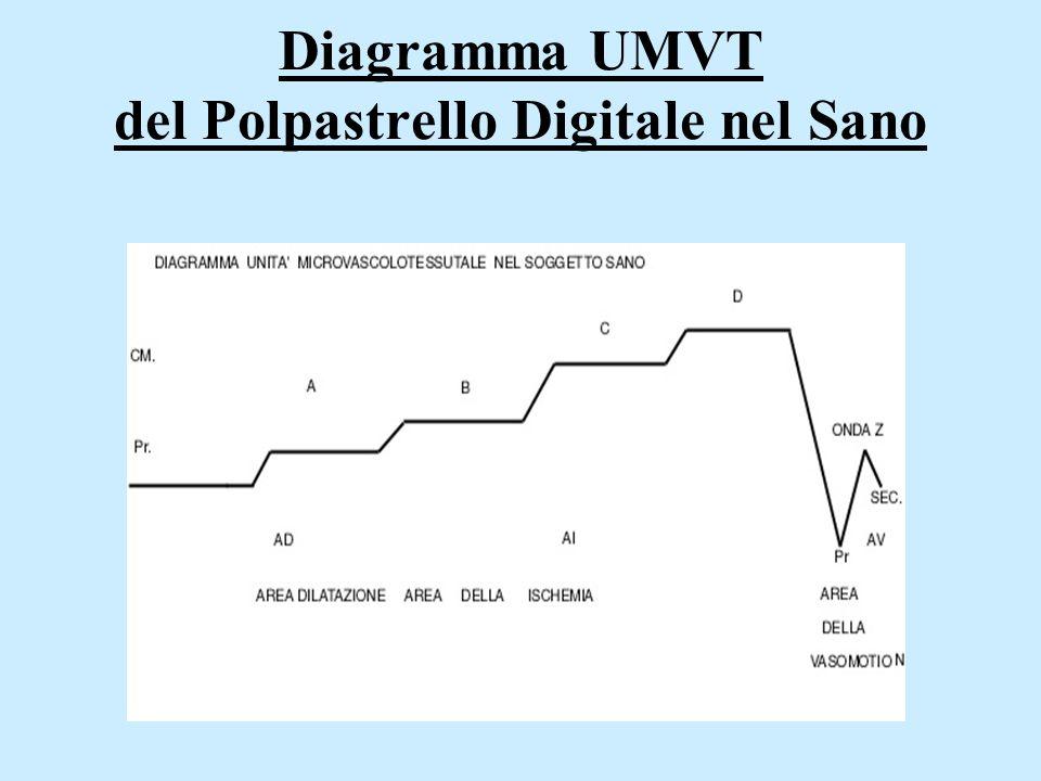 Diagramma UMVT del Polpastrello Digitale nel Sano