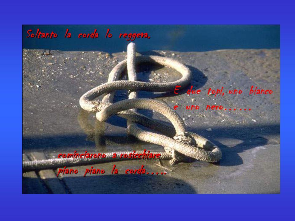 Soltanto la corda lo reggeva. E due topi, uno bianco e uno nero…… cominciarono a rosicchiare piano piano la corda…..