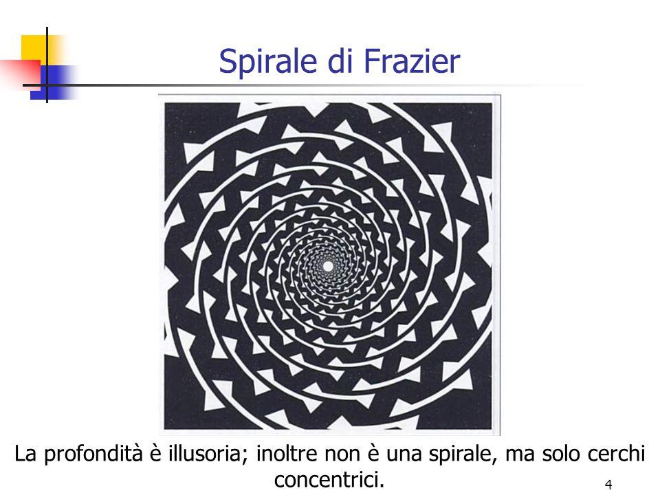 4 Spirale di Frazier La profondità è illusoria; inoltre non è una spirale, ma solo cerchi concentrici.