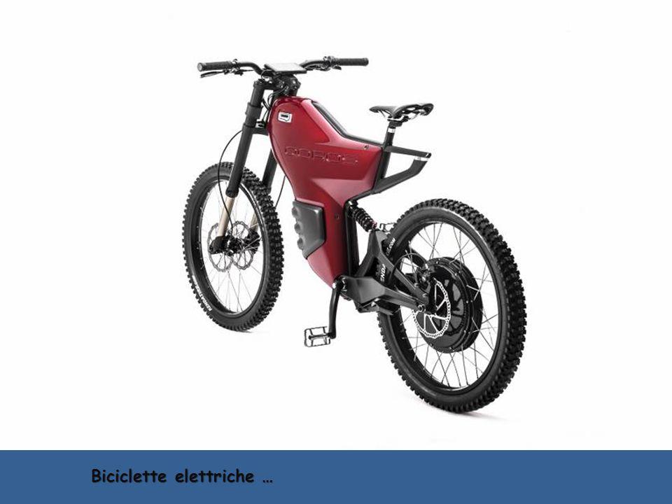 RacyngBicycle – non bici da corsa…
