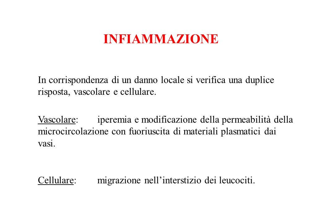 INFIAMMAZIONE In corrispondenza di un danno locale si verifica una duplice risposta, vascolare e cellulare. Vascolare:iperemia e modificazione della p
