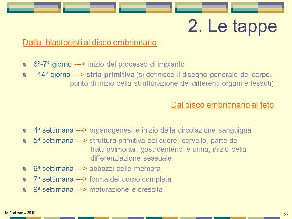 M.Calipari - 2010 22 2. Le tappe Dalla blastocisti al disco embrionario 6°-7° giorno ---> inizio del processo di impianto 14° giorno ---> stria primit