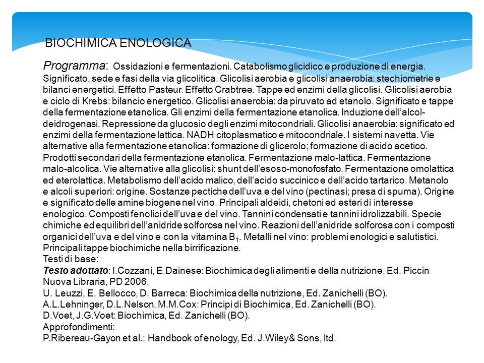 Programma: Ossidazioni e fermentazioni. Catabolismo glicidico e produzione di energia. Significato, sede e fasi della via glicolitica. Glicolisi aerob