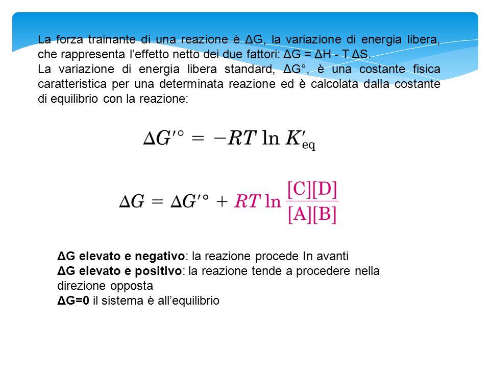 La forza trainante di una reazione è ΔG, la variazione di energia libera, che rappresenta l'effetto netto dei due fattori: ΔG = ΔH - T ΔS. La variazio