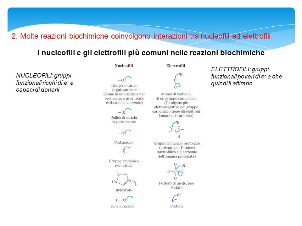 I nucleofili e gli elettrofili più comuni nelle reazioni biochimiche 2. Molte reazioni biochimiche coinvolgono interazioni tra nucleofili ed elettrofi