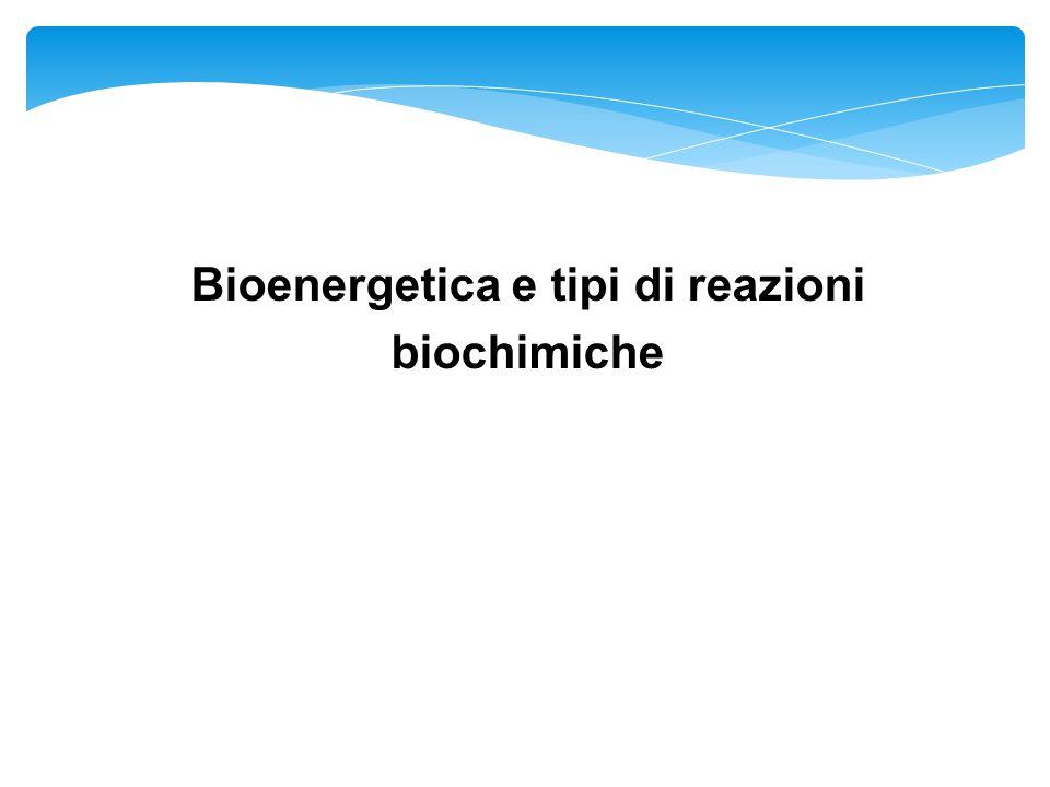 Bioenergetica e tipi di reazioni biochimiche