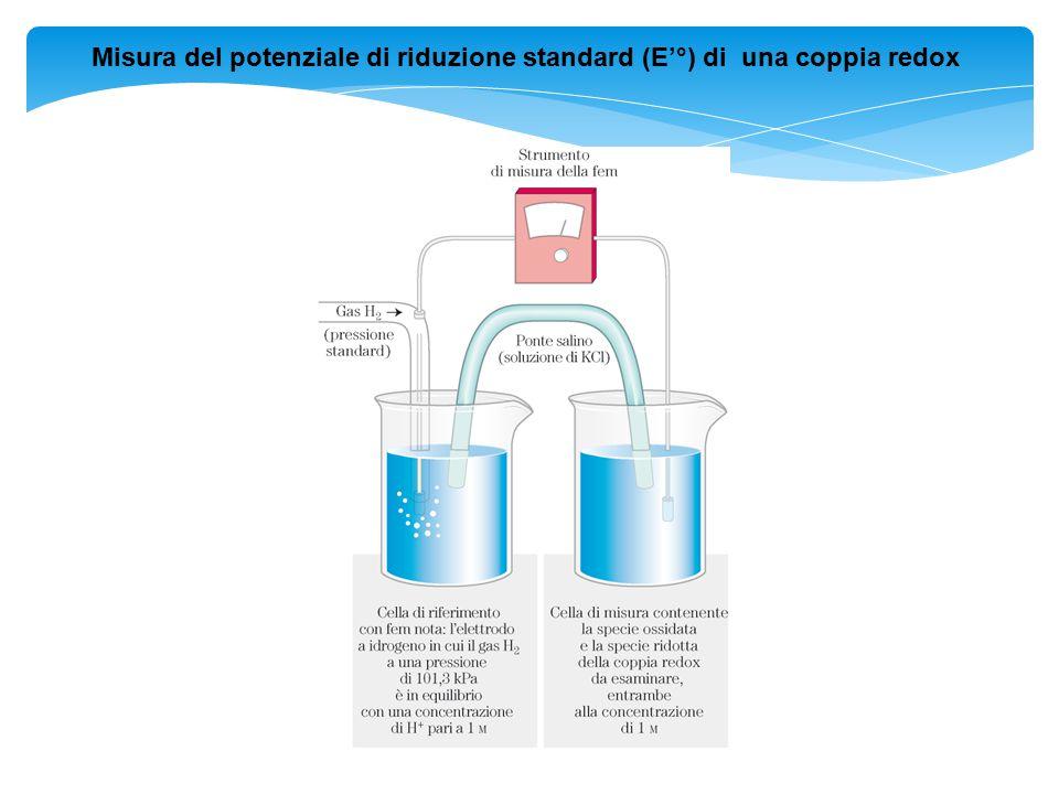 Misura del potenziale di riduzione standard (E'°) di una coppia redox