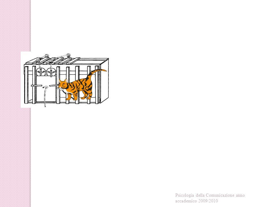 Rimessi nello stesso tipo di gabbia, Thorndike notò che gli animali necessitavano di minor tempo per trovare il modo di evadere: ciò rappresentava per lo studioso la prova di un avvenuto apprendimento sebbene cieco (ossia per prove ed errori e non intelligente).