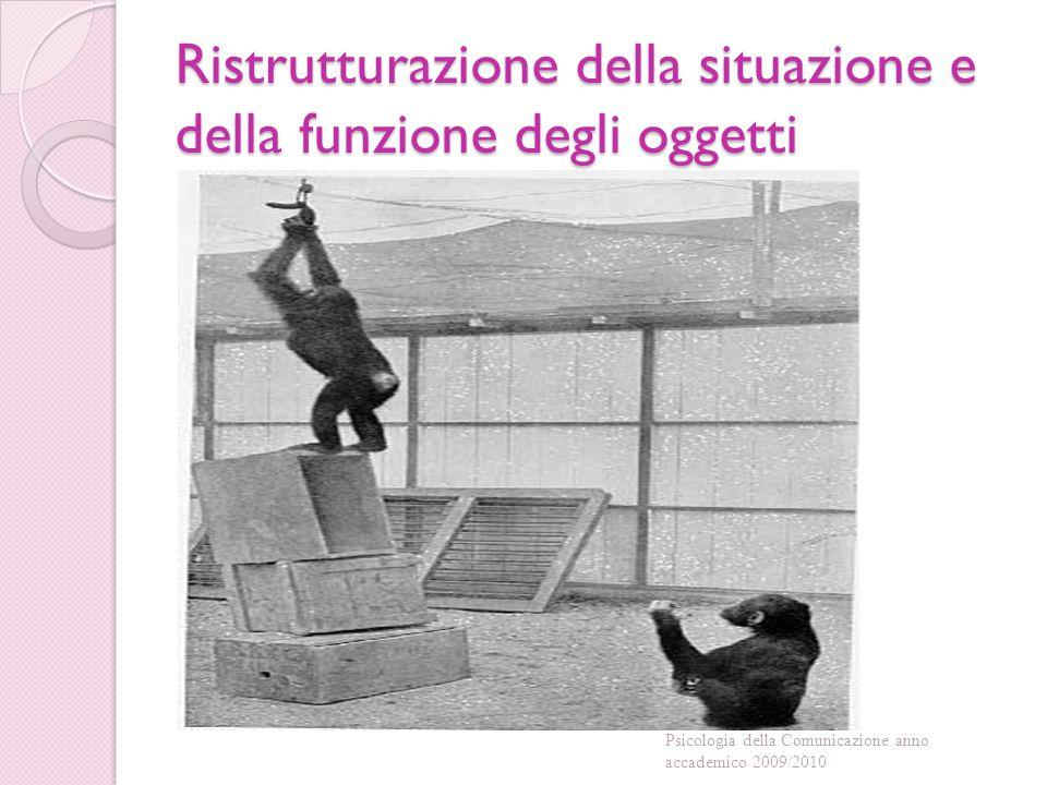 Ristrutturazione della situazione e della funzione degli oggetti Psicologia della Comunicazione anno accademico 2009/2010